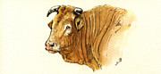 Nature Study Paintings - Ox head painting study by Juan  Bosco