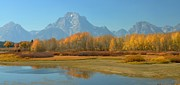 Struckle Framed Prints - OxBow Bend Framed Print by Kathleen Struckle