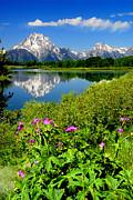 Frank Houck - Oxbow Bend-Snake River