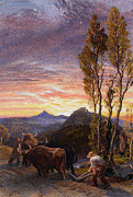 Landscapes Paintings - Oxen Ploughing at Sunset by Samuel Palmer