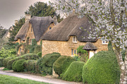 David Birchall - Oxfordshire Thatch.