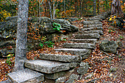 Ozark Mountains Photos - Ozark Trail by Jon Emery
