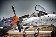 Dan Quam - P-51 and A-10
