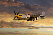 North American P51 Mustang Prints - P-51 Ferocious Frankie Print by James Biggadike
