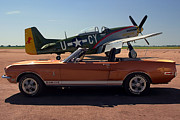 Shelby 350 Posters - P 51 Mustang and Shelby Mustang Poster by Tim McCullough