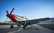 North American P51 Mustang Photo Posters - P-51 Mustang Poster by F Leblanc