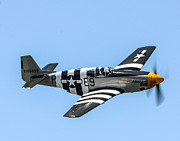 P-51 Mustang Photos - P-51 Mustang Fighter by Puget  Exposure