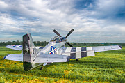 Guy Whiteley - P-51 Mustang
