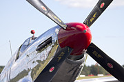 Lewiston Prints - P-51 Mustang Print by Jim Walker