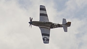 Jet Star Photos - P-51 Mustang by Maj Seda