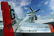 P51 Photo Posters - P-51 Mustang Pecos Bill Poster by Rod Seel