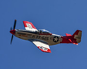 Aviation Art - P-51 Mustang  by Puget  Exposure