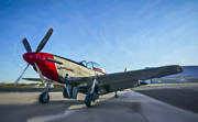 North American P51 Mustang Photo Posters - P-51 Mustang v2 Poster by F Leblanc