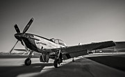 North American P51 Mustang Photo Posters - P-51 Mustang v3 Poster by F Leblanc