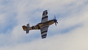 P51 Photo Posters - P-51D Mustang Poster by Maj Seda