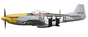 Us Army Air Force Digital Art Posters - P-51d Mustang, Nicknamed Ferocious Poster by Inkworm
