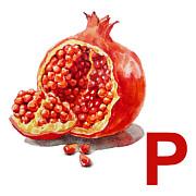 P Art Alphabet For Kids Room Print by Irina Sztukowski