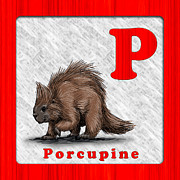 Abc Drawings - P for Porcupine by Jason Meents