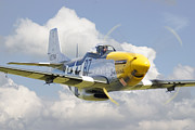 Aviation Framed Prints - P51 Ferocious Frankie Framed Print by Pat Speirs