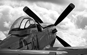 P51 Mustang Posters - P51 in clouds Poster by Remy NININ