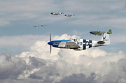 Fighter Aircraft Framed Prints - P51 Mustang - Blue Noses - 352nd FG Framed Print by Pat Speirs