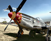 P51 Photo Posters - P51 Mustang Gentleman Jim Poster by Tim Rutz