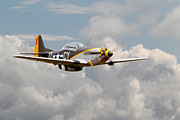 D-day Framed Prints - P51 Mustang - Miss Velma Framed Print by Pat Speirs