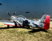 P51 Photo Posters - P51 Mustang Worry Bird 2 Poster by Tim Rutz