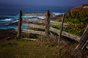 Barbwire Prints - Pacific Coast Fence Print by Garry Gay