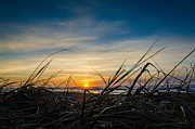 Oregon State Art - Pacific Coast Sunset by Puget  Exposure
