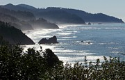 Oregon Coast Prints - Pacific Mist Print by Karen Wiles