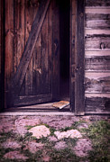 Mysterious Doorway Posters - Package by Open Front Door Poster by Jill Battaglia