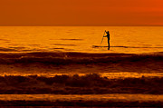 Jacksonville Digital Art Prints - Paddle Board Print by Jim Finch