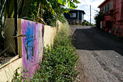 Paia Alleyway Print by Matt Radcliffe