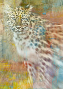 Animals Mixed Media Framed Prints - Paint Me A Cheetah Framed Print by Trish Tritz