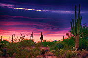 Pink Skies Prints - Paint the Desert with Color  Print by Saija  Lehtonen