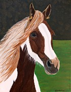 Colts Paintings - Painted Beauty by Vicki Maheu