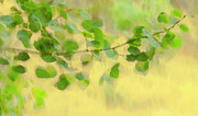 Impressionism Photos - Painted By The Wind Two by Theresa Tahara