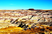 Petrified Forest Prints - Painted Desert in Petrified Forest National Park Vivid Print by Shawn OBrien