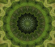Kaleidoscope Digital Art - Painted Kaleidoscope 8 by Rhonda Barrett