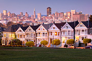 Painted Ladies Framed Prints - Painted ladies Framed Print by Emmanuel Panagiotakis