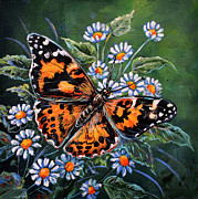 Gail Butler - Painted Lady