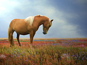 Wild Horses Digital Art Posters - Painted Pastures Poster by Sharon Lisa Clarke