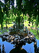 Reflections In Water Prints - Painted Pond Halifax Public Gardens Print by John Malone