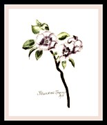 Quince Prints - Painted Quince Flower Print by Marsha Heiken