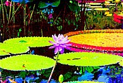 Painterly Water Lily Print by Annie Zeno