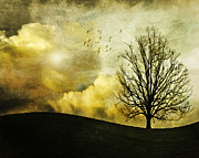 Lone Tree Pyrography Prints - Painting a sunset Print by Viviana Gonzalez