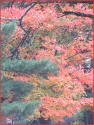 Happy Posters Photo Posters - Painting autumn Poster by Sonali Gangane