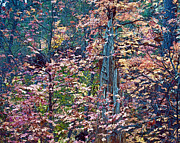 Oak Creek Photo Originals - Painting of Leaves by Brian Lambert