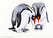 Penguin Pastels Posters - Pair of Emperor Penguins with egg Poster by Kurt Tessmann